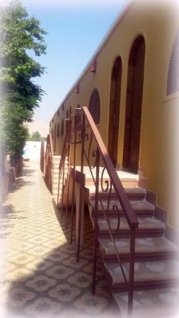 Desert Paradise Lodge: Die normalen Zimmer mit verschiedenen Ausstattungen fotografiert vom Garten ( Richtung Rezeption