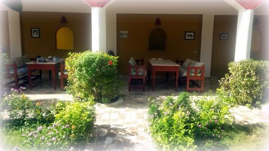 Desert Paradise Lodge: Der Outdoor Eßbereich im Garten, hier gab es jeden morgen unser Frühstück