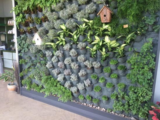 Giardino verticale foto di terre del tirino capestrano for Giardino verticale