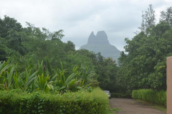 Ayurvedic Village Foto