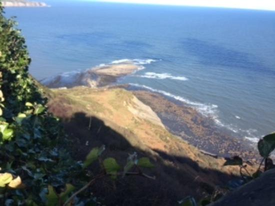 Jadellas Guest House: Scarborough walks