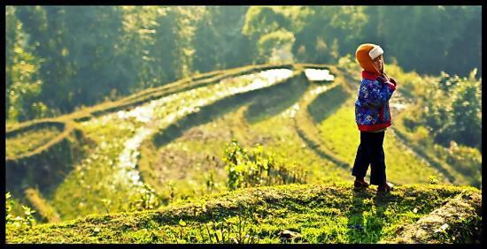 Sa Pa Vietnam Picture Of Funny Travel Hanoi Tripadvisor