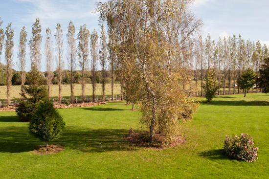 Logis Le Sainte Mere: jardin
