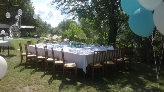 dall\'argine - Picture of Le Terrazze Sul Po, Borgoforte - TripAdvisor