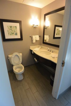 hilton garden inn raleigh cary bathroom junior suite hilton garden inn - Hilton Garden Inn Cary Nc
