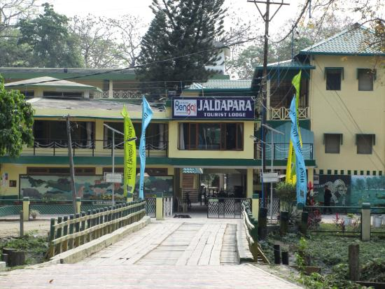 Inside Hollong Forest  Picture of Jaldapara Tourist Lodge
