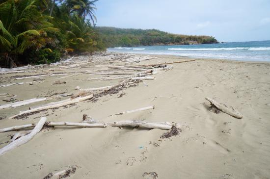 Bacolet Bay, Tobago: Do You Like A Quiet Beach?