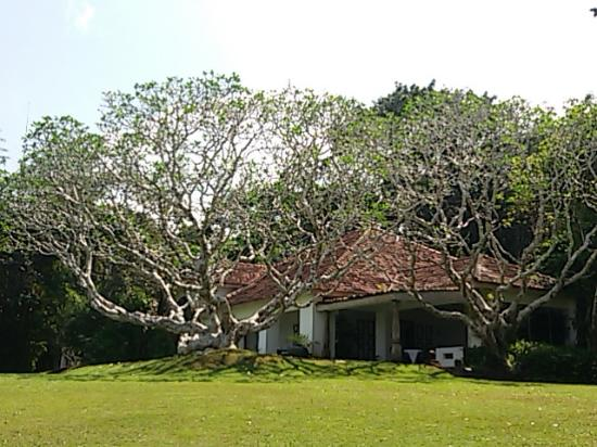 Bawa House 87: Inside the Lunuganga estate
