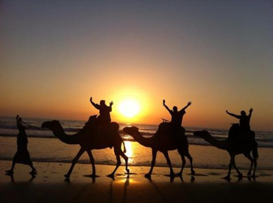 Tamraght, Morocco: camel riding in agadir morocco