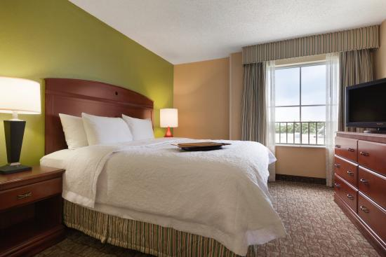 Hampton Inn & Suites Ft. Lauderdale Airport/South Cruise Port: 1 King Bed