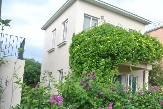 vue de la villa bois rose bungalows piscine jardin et fleurs magnifique obr zok la villa. Black Bedroom Furniture Sets. Home Design Ideas
