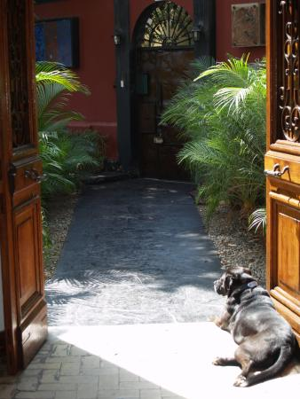 Second Home Peru: Front courtyard