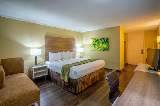 Wyndham Garden Washington DC North BW Parkway: Newly remodeled in 2016 -Single King View of Room