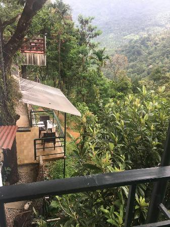best resort in munnar picture of wild elephant eco friendly resort rh tripadvisor com