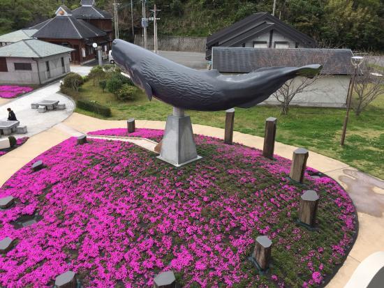 Minamisatsuma, Japan: photo0.jpg