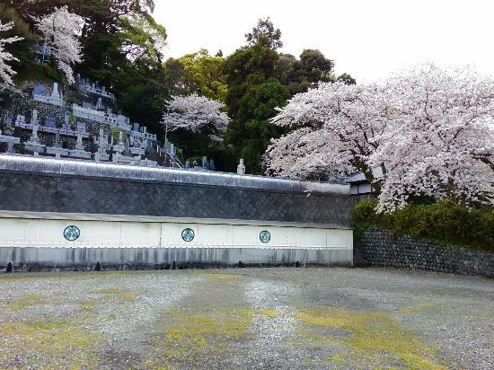 Tesshuji Temple : P_20160405_145338_large.jpg