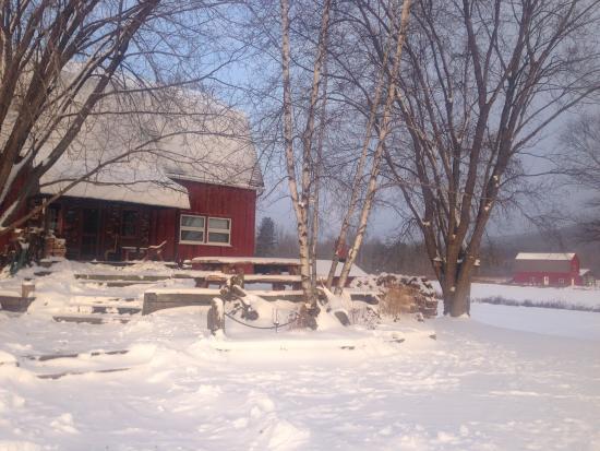 Shinglehouse, PA: Winter wonderland