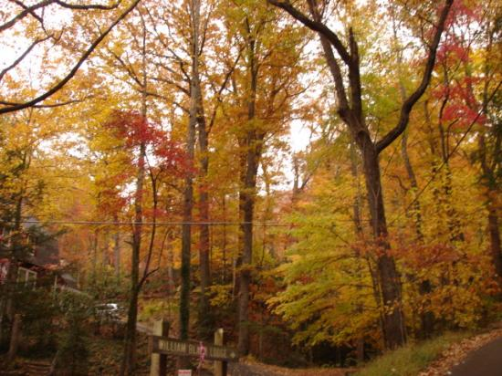 The fall colors are spectacular at Montreat and in the Blue Ridge Mountains.