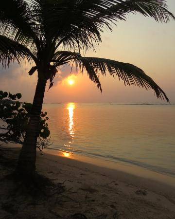 Barefoot Cay: My morning view of sunrise