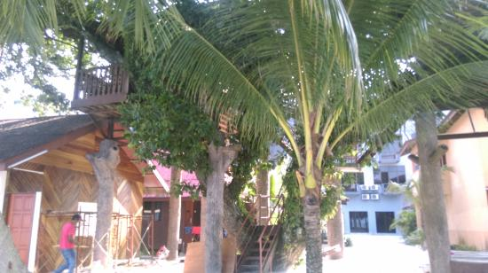 Malibest Resort: a tree house is also available