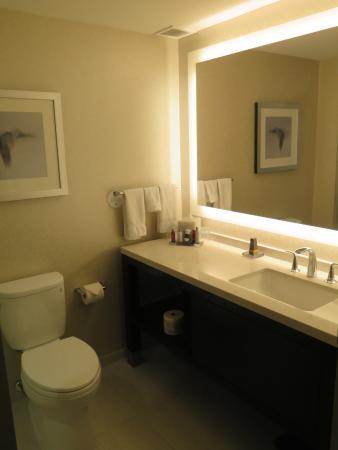 Toronto Marriott Downtown Eaton Centre Hotel: Bathroom - wall to wall mirror