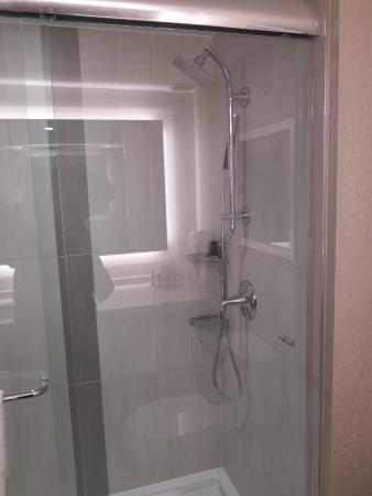 Toronto Marriott Downtown Eaton Centre Hotel: Class sliding shower stall - no tub