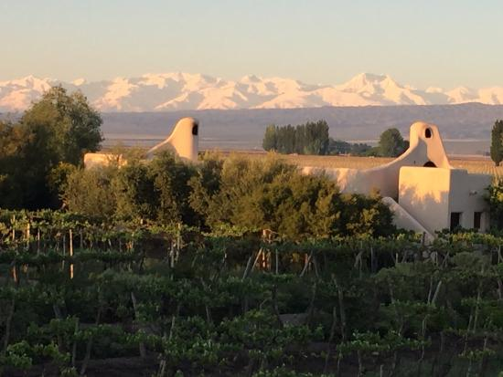 Cavas Wine Lodge: Gorgeous View of the Andes
