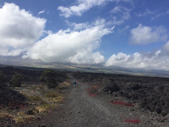 Puʻu ʻOʻo Trail : photo7.jpg