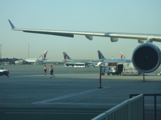 Makanan Menu Asia Picture Of Qatar Airways Tripadvisor