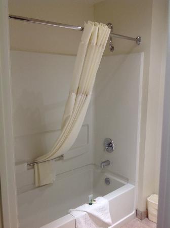 Best Western Americana: Shower