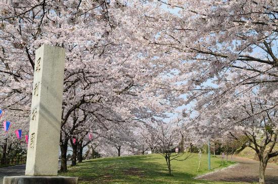 Ashikaga Park