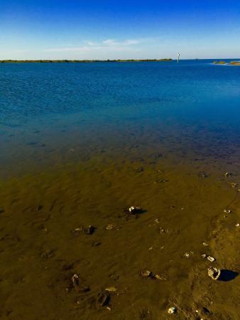 Laguna Madre: photo1.jpg
