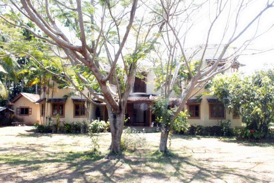 Castle Guest House: Main Entrance