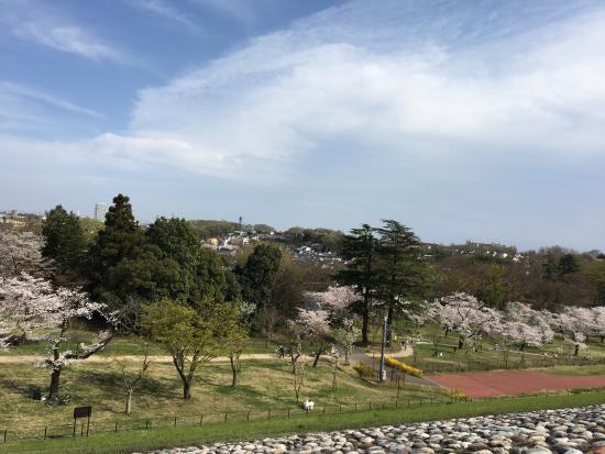 Sayama Park: photo1.jpg