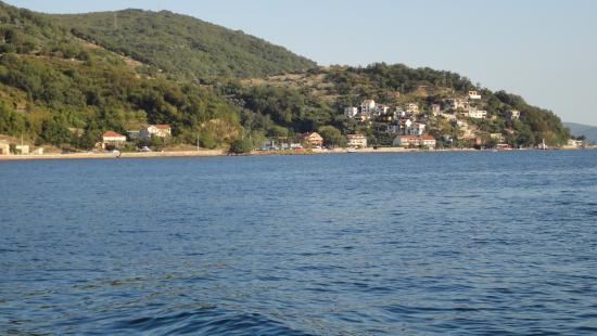 Gambar Dalmatia