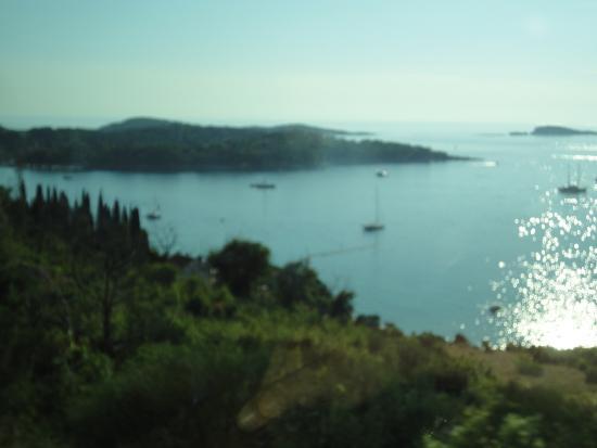 Dalmatia Photo