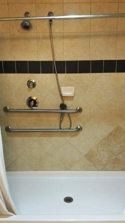 Best Western Plus Christopher Inn & Suites: Shower