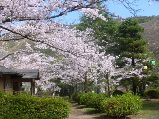 Suwa Park