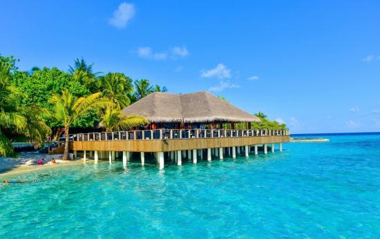 Pool - Eriyadu Island Resort Photo