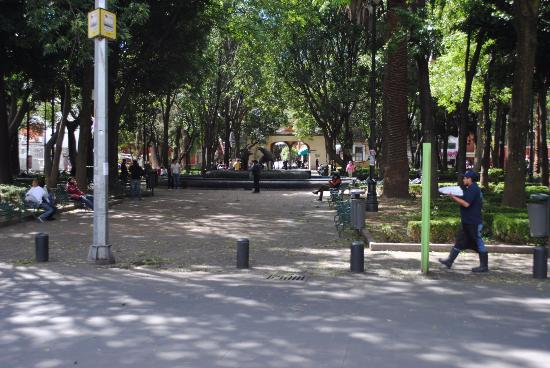 Plaza Hidalgo Mexico City 2020 All You Need To Know Before You