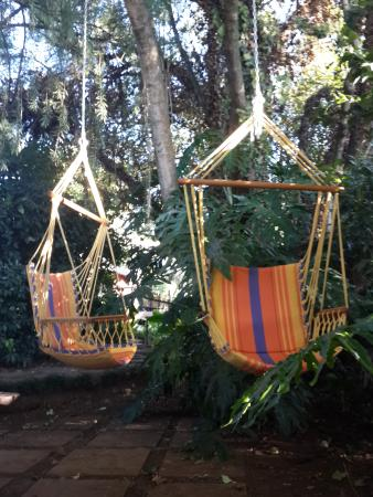 Sabie, Sudáfrica: Hanging chairs in garden