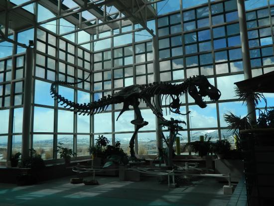 Natural History Museum Rock Springs Wyoming