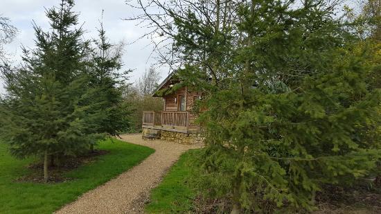 Bishop Wilton, UK: 20160403_161356_large.jpg