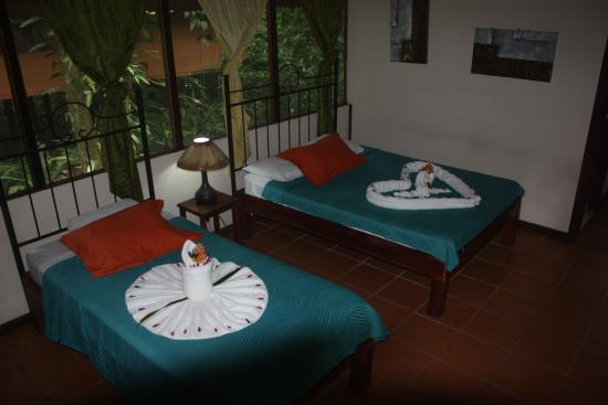 Rana Roja Lodge: Rooms