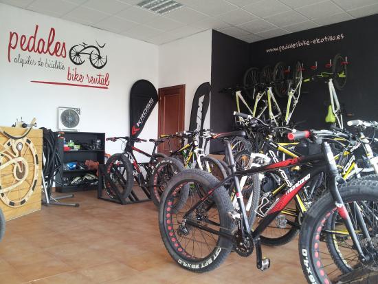 Pedales Alquiler de Bicicletas