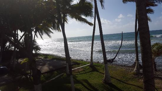 Caribe Playa Beach Resort: View from Balcony