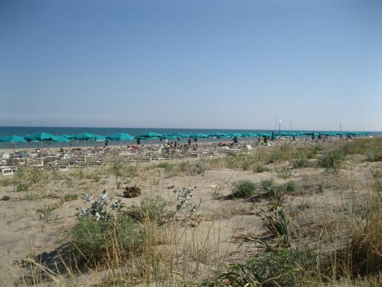 Percorso verso il mare foto di villaggio torre del faro - Da roma porta verso il mare ...