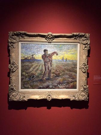 Museum of Fine Arts (Musee des Beaux-Arts): Musee des Beaux-Arts