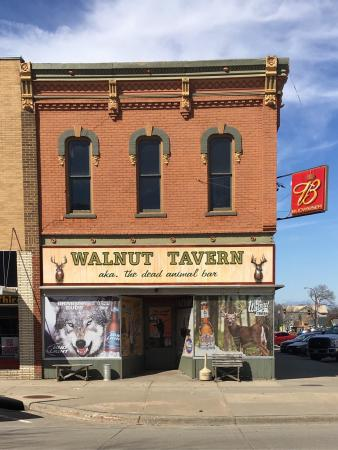 Walnut Tavern AKA The Dead Animal Bar
