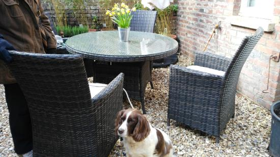 Budleigh Salterton, UK: Outdoor seating